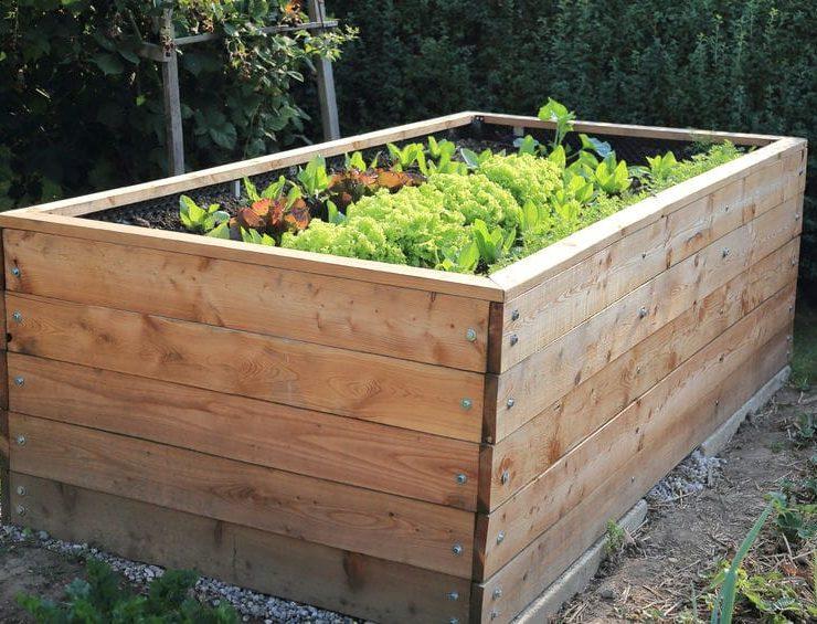 garden pest control temecula fallbrook