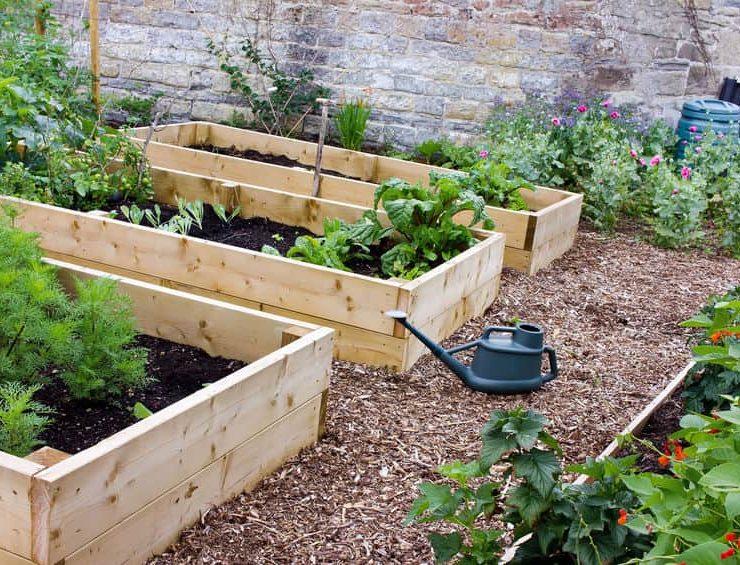temecula garden pest control